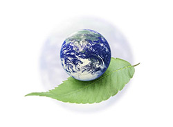 earth leaf